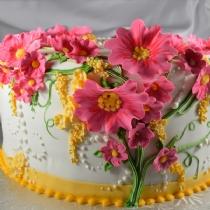 cake160